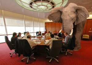 Elephant in the room - CU